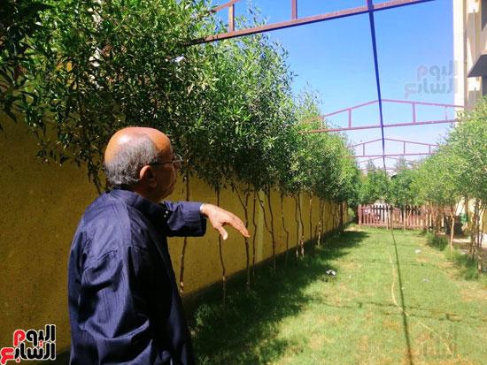حدائق-خضراء-وفصول-مزينة-بالألوان-بفضل-مجلس-الامناء-بالفيوم-(9)