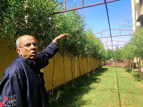 حدائق-خضراء-وفصول-مزينة-بالألوان-بفضل-مجلس-الامناء-بالفيوم-(14)