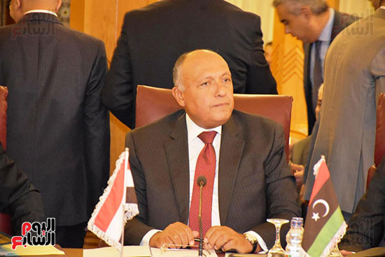 جامعة الدول العربية (8)