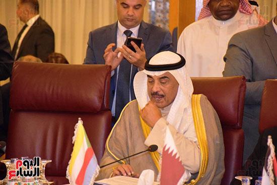 جامعة الدول العربية (14)