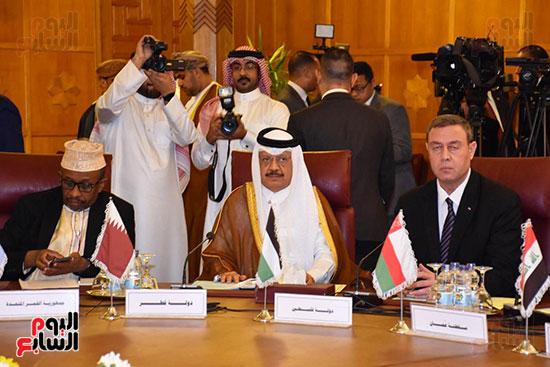 جامعة الدول العربية (15)