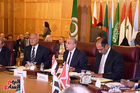 جامعة الدول العربية (3)