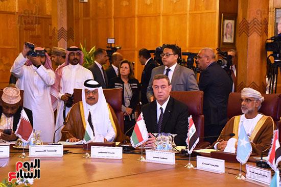 جامعة الدول العربية (12)
