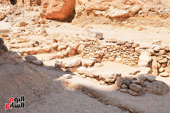 عثرت البعثة بالمقبرة علي بقايا جلود وريش كتانية مكتولة وفرع شجرة من السنط