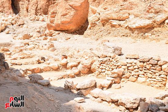 المقبرة تضم بقايا بصل ودوم وكتان وتين وحبال وجلود وبقايا عظام حيوانية