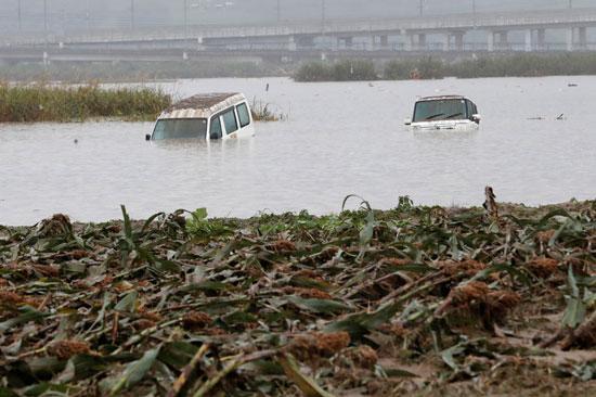السيارات تطفو على سطح المياه