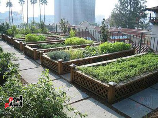 5--مشروع-زراعة-الأسطح