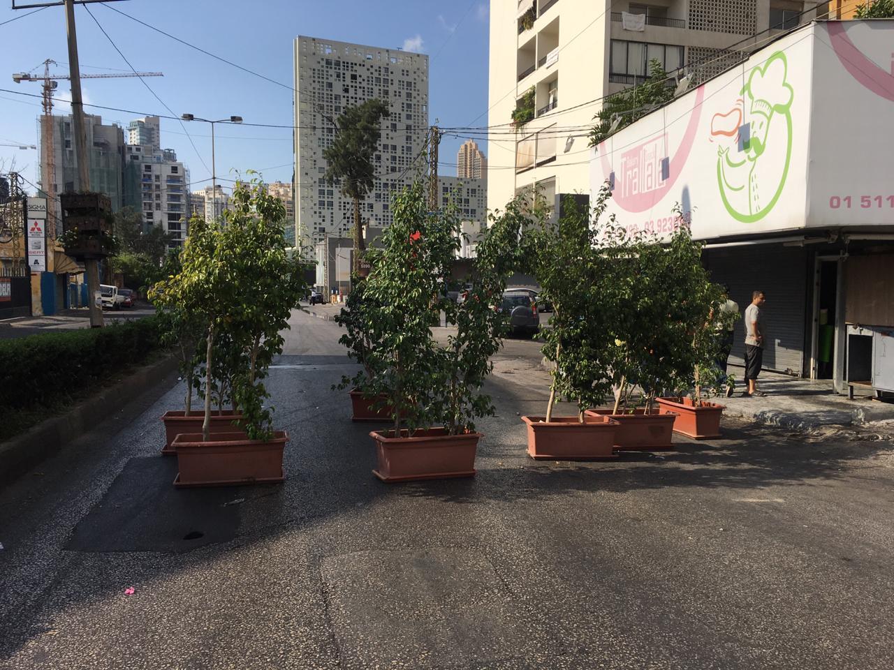 قطع الطريق بالنباتات