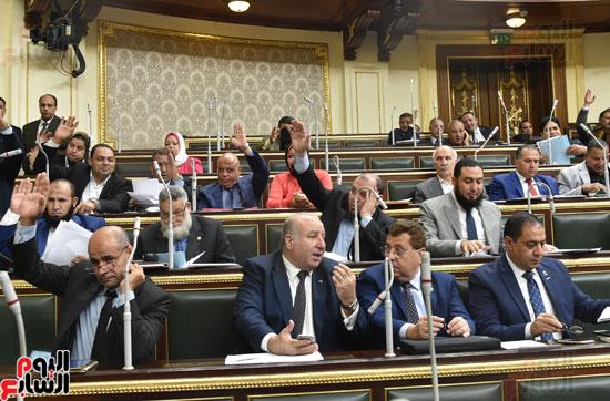 الجلسة العامة لمجلس النواب (11)