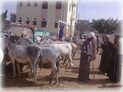 سوق الخميس في مركز الشباب  (2)
