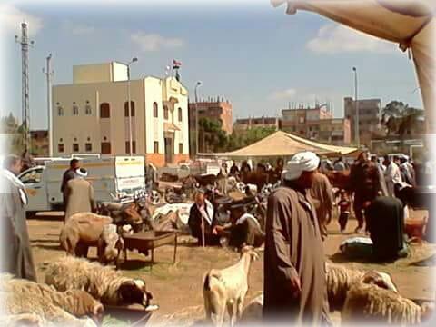 سوق الخميس في مركز الشباب  (4)