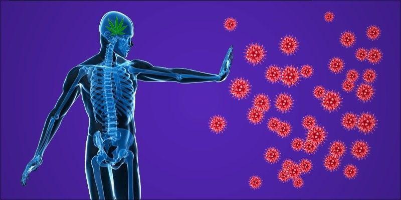 امراض المناعة الذاتية