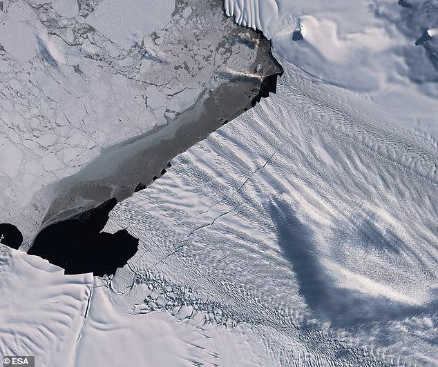 شقوق انتاركتيكا