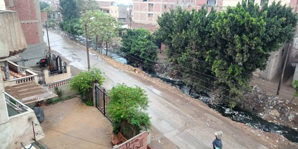 أمطار رعدية تضرب مدن القليوبية وقطع الكهرباء ببعض المناطق (4)