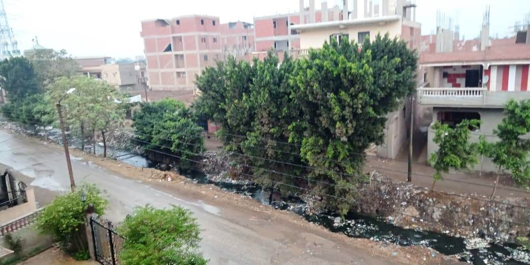 أمطار رعدية تضرب مدن القليوبية وقطع الكهرباء ببعض المناطق (2)