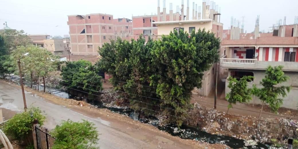 أمطار رعدية تضرب مدن القليوبية وقطع الكهرباء ببعض المناطق (1)