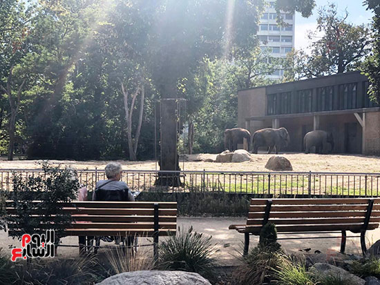 حديقة حيوان برلين (2)