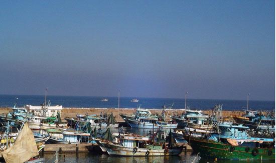الأمطار-تغرق-المحافظات-وإغلاق-الموانئ-فى-الإسكندرية-وكفر-الشيخ-(11)