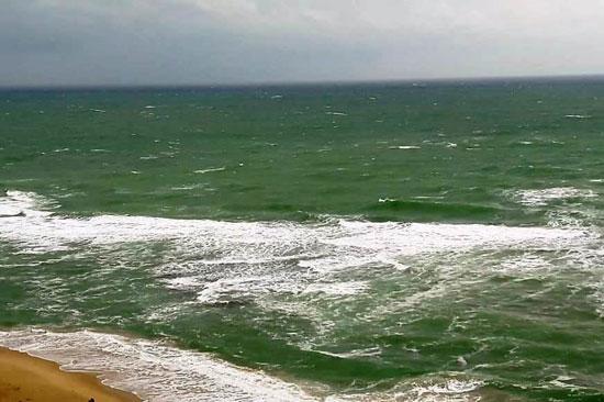 شواطئ الإسكندرية (7)