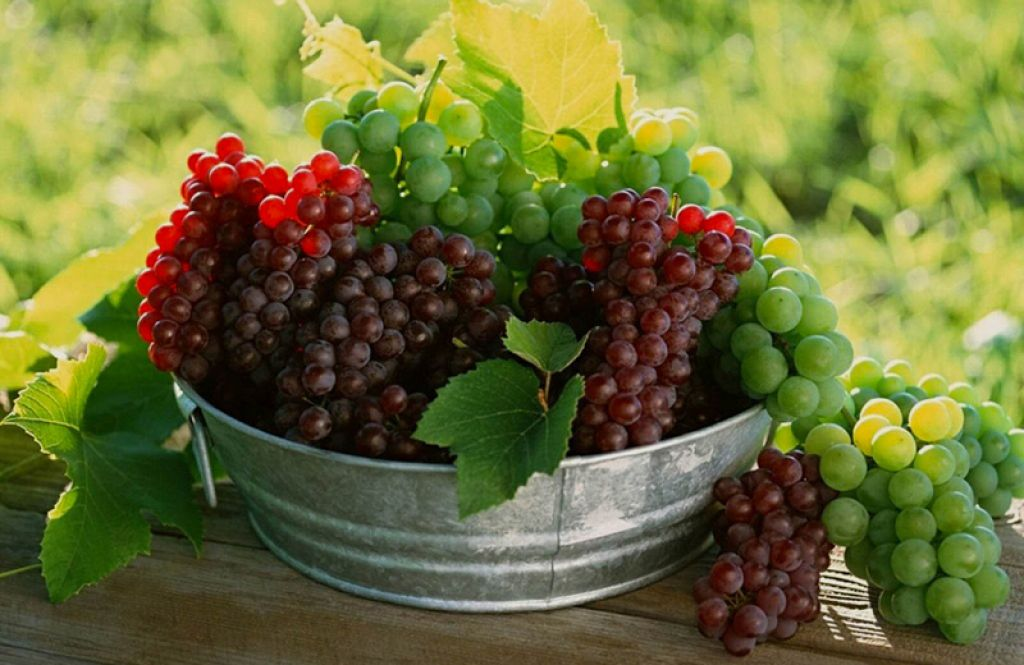 العنب نفيد للقلب