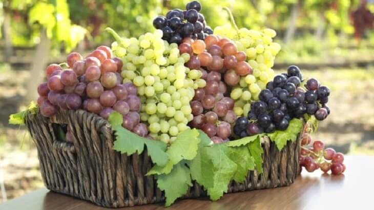 تعرف على اهم فوائد العنب