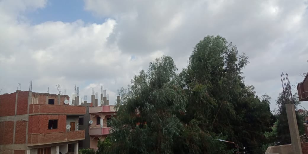 الغيوم في سماء القليوبية