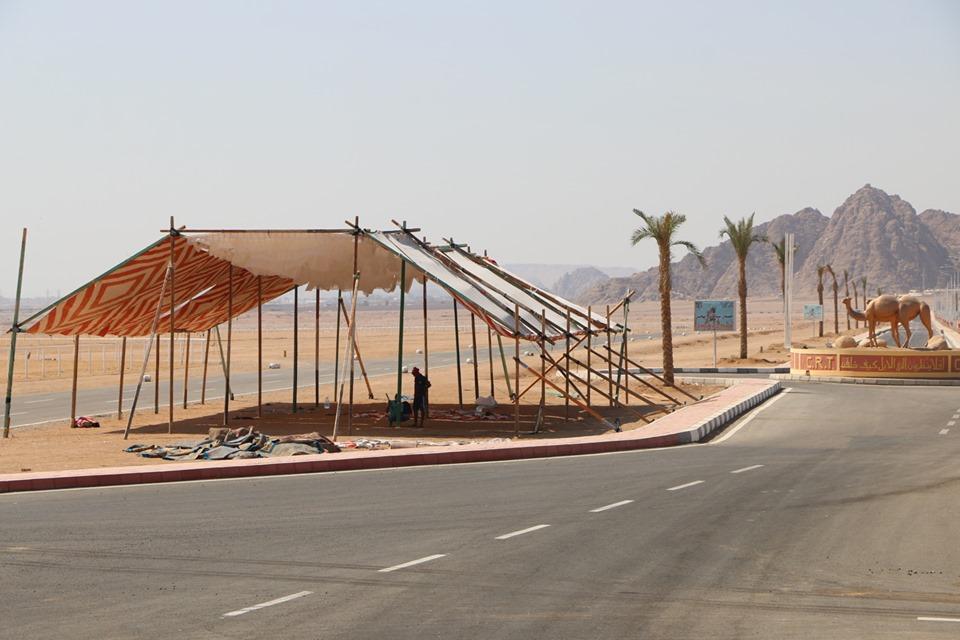 مضمار المهرجان الأول لسباقات رياضات الهجن بمدينة شرم الشيخ (15)