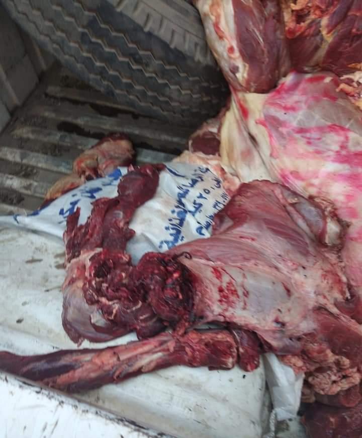 حملة مكبرة لمواجهة المخالفين ومروجى اللحوم  (1)