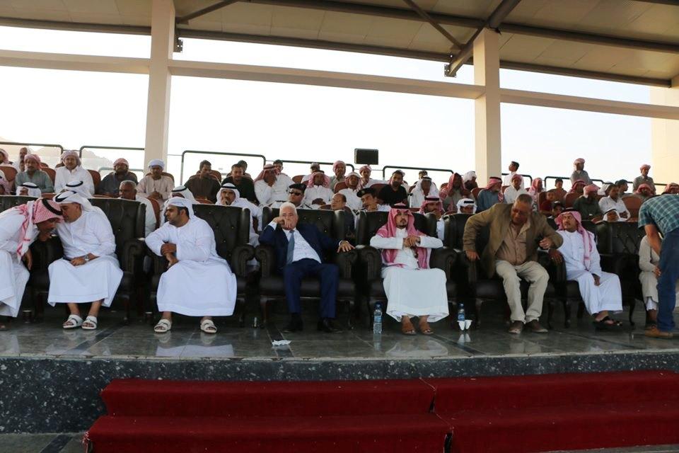 انطلاق فعاليات مهرجان شرم الشيخ الأول للهجن  (5)