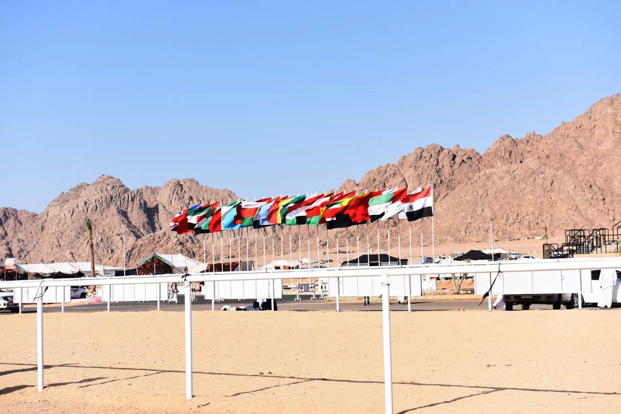 أعلام الدول المشاركه فى مهرجان  الهجن
