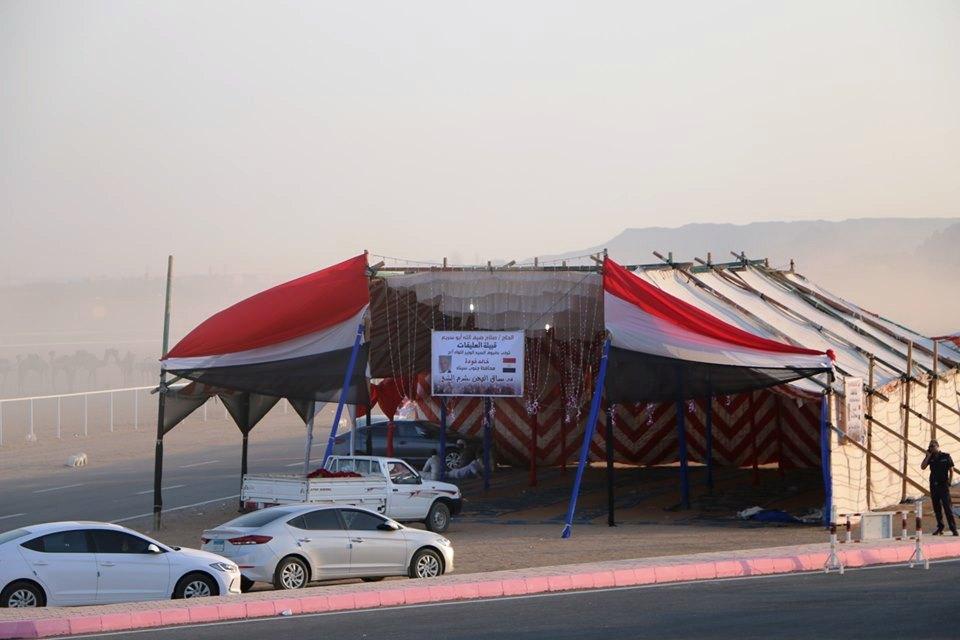 انطلاق فعاليات مهرجان شرم الشيخ الأول للهجن  (1)