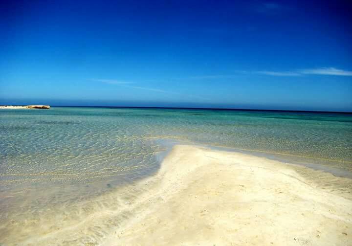 21-مياه صافية بشواطئ مرسي علم