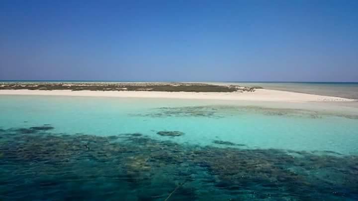 7-نقاء مياه شواطئ مرسي علم