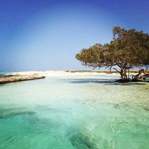 33-جمال شواطئ محمية وادي الجمال