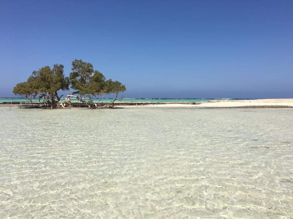 32- احد شواطئ محمية وادي الحمال