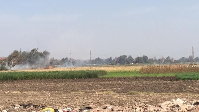 3- مزارع يحرق قش الأرز فى أرضه