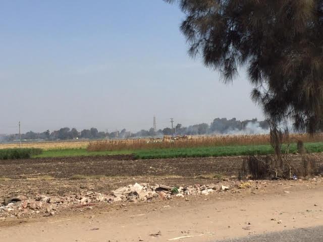 1- تصاعد الدخان الكثيف بسبب حرق قش الأرز