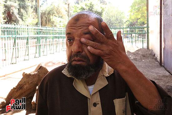 عم محمد يرثى الفيلة نعيمة (2)