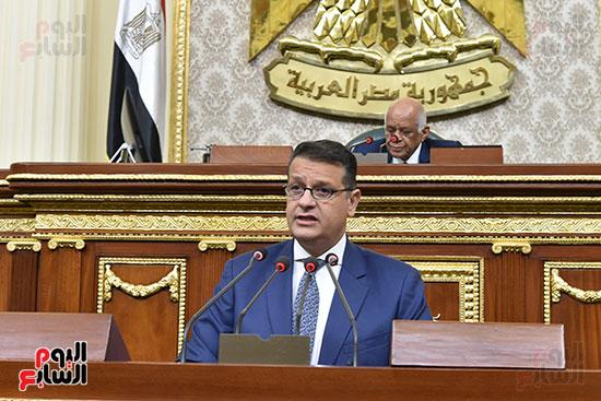 طارق رضوان بالجلسة العامة
