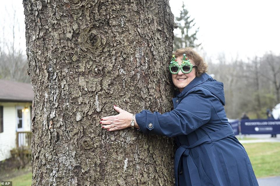 مواطنة تحتضن الشجرة