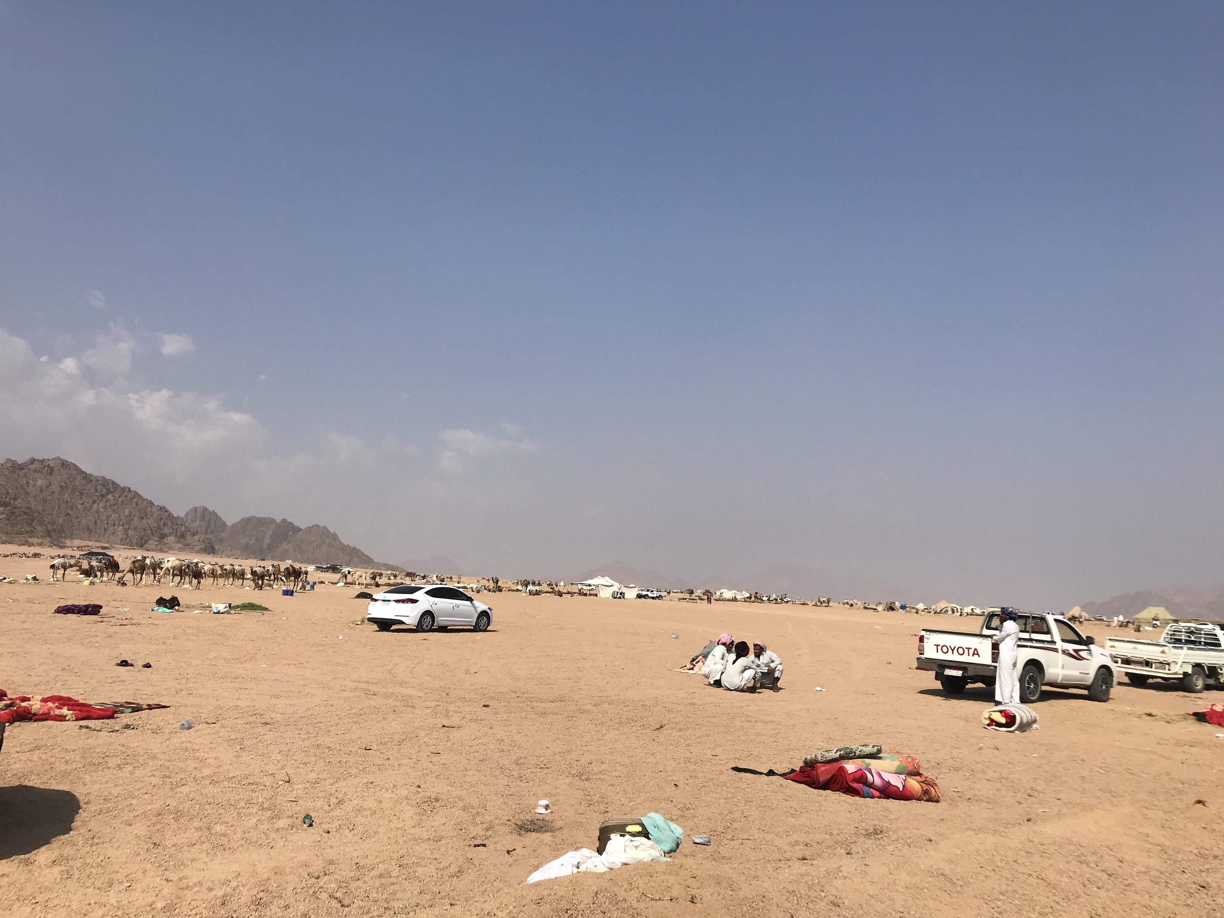 المشاركون فى مهرجان الهجن بشرم الشيخ من مختلف المحافظات (3)