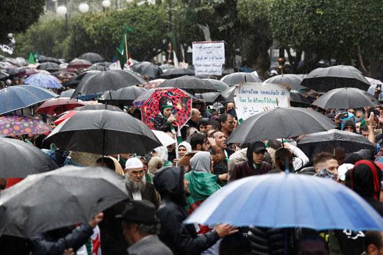 المحتجون يرفعون الشمسيات
