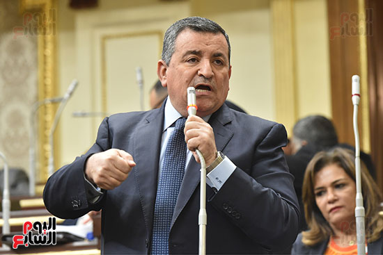 جلسة مجلس النواب برئاسة الدكتور على عبد العال (16)