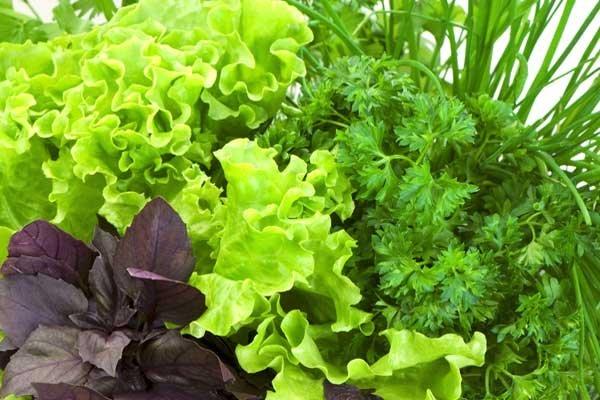 الخضروات لها فوائد عديدة لنمو اللحية