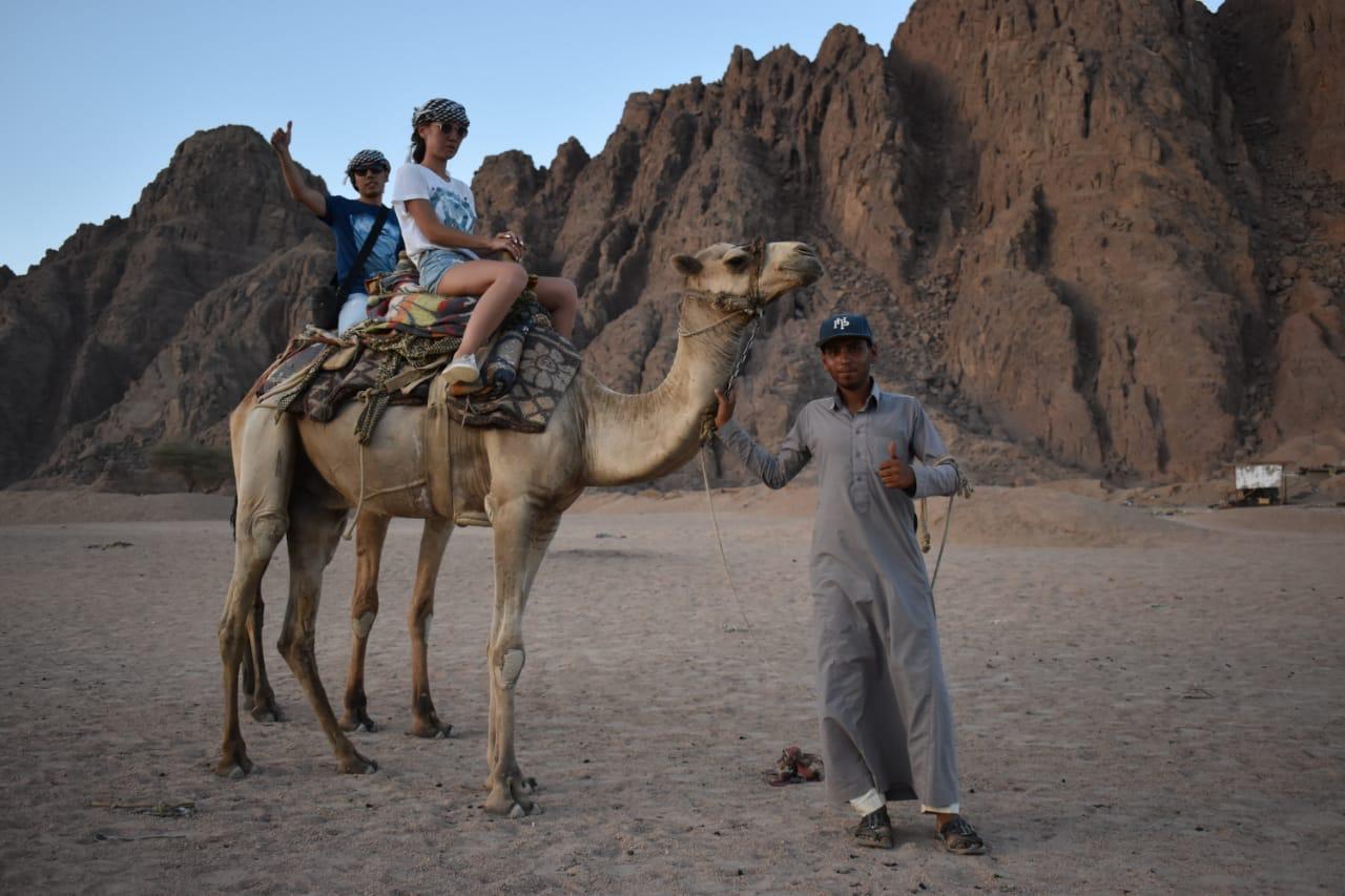 سياحة السفارى والجبال بشرم الشيخ  (5)