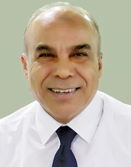 محمود الربيعى