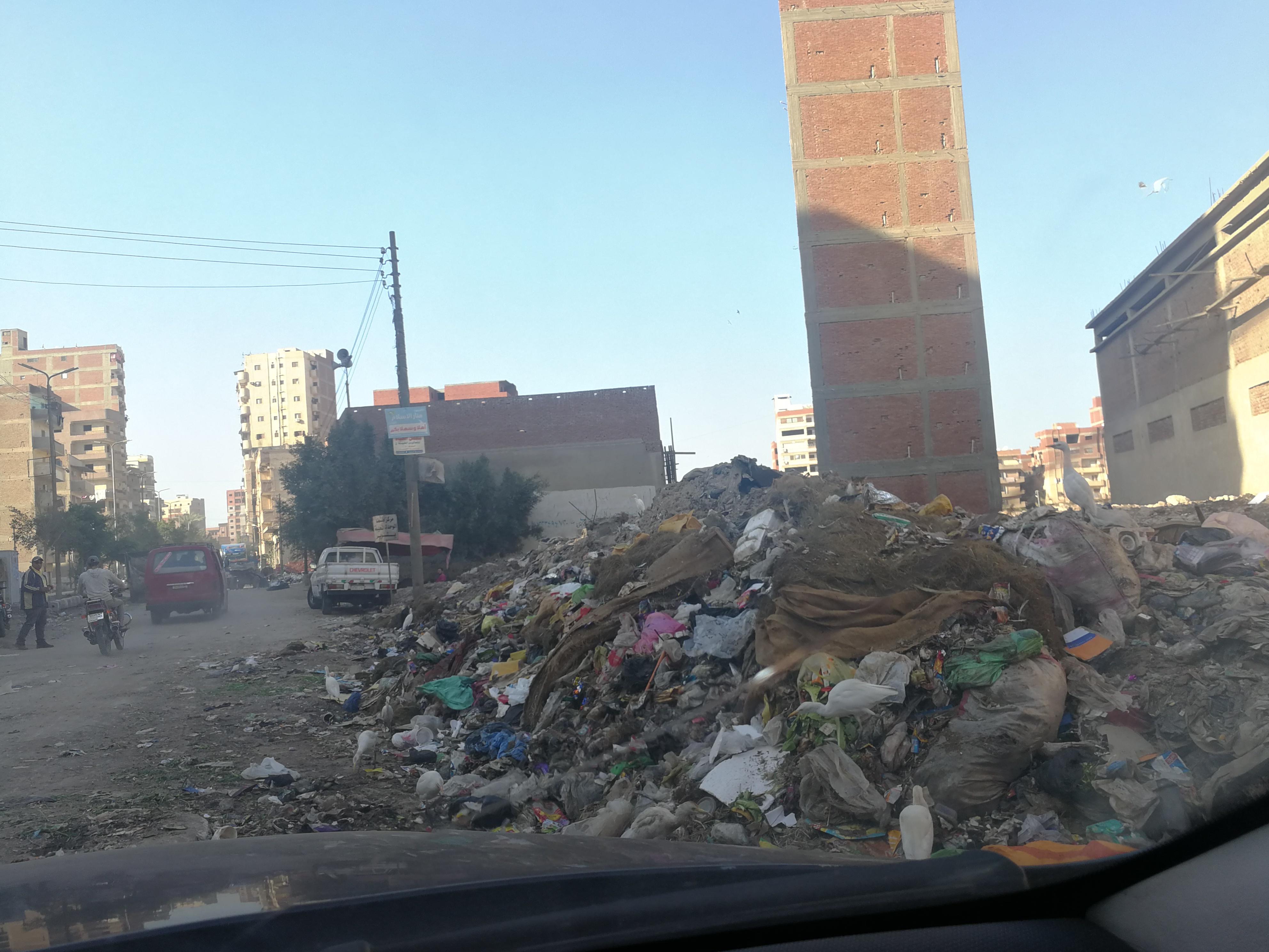 القمامة فى  شوارع طنطا (7)