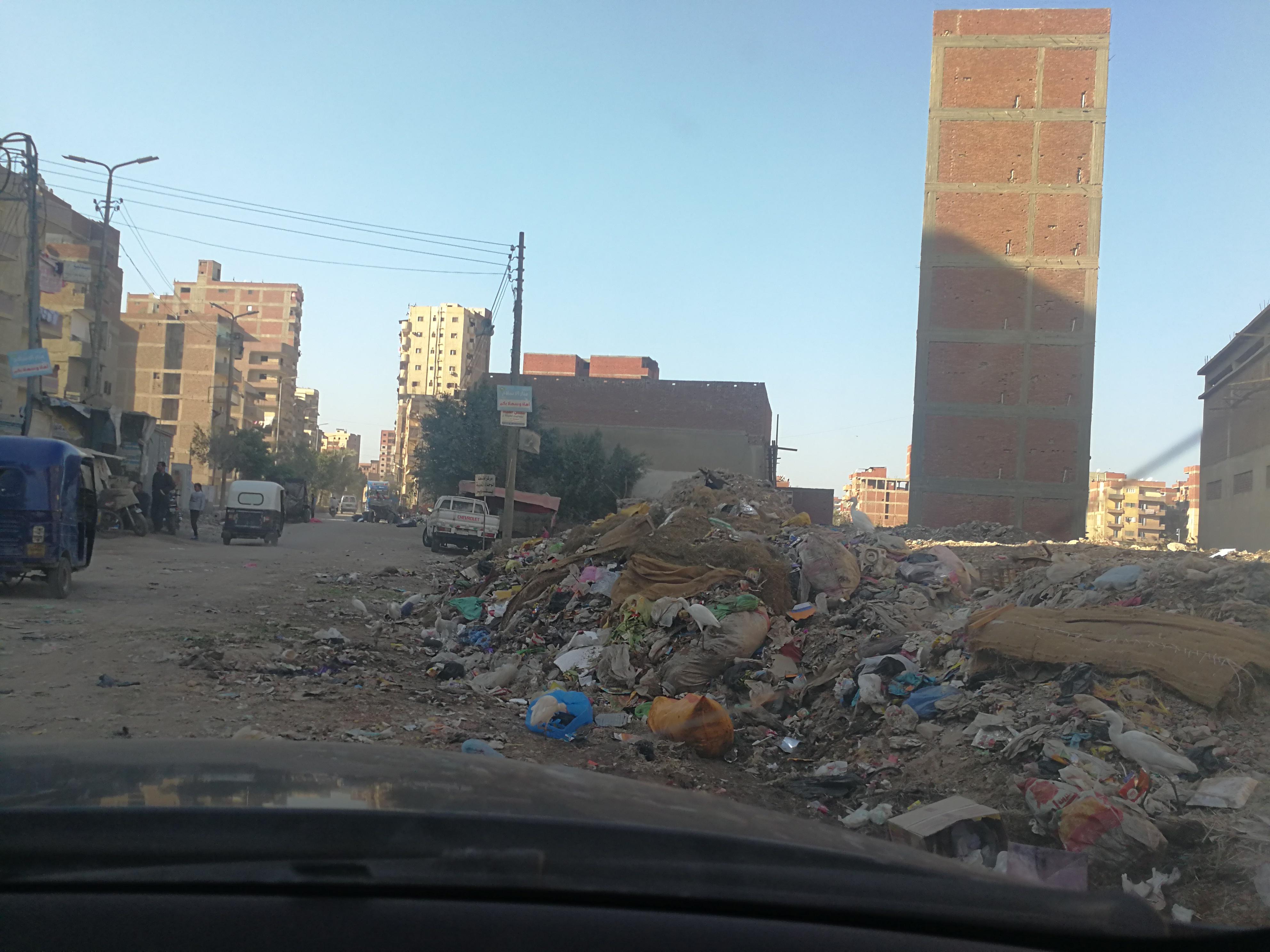 القمامة فى  شوارع طنطا (5)