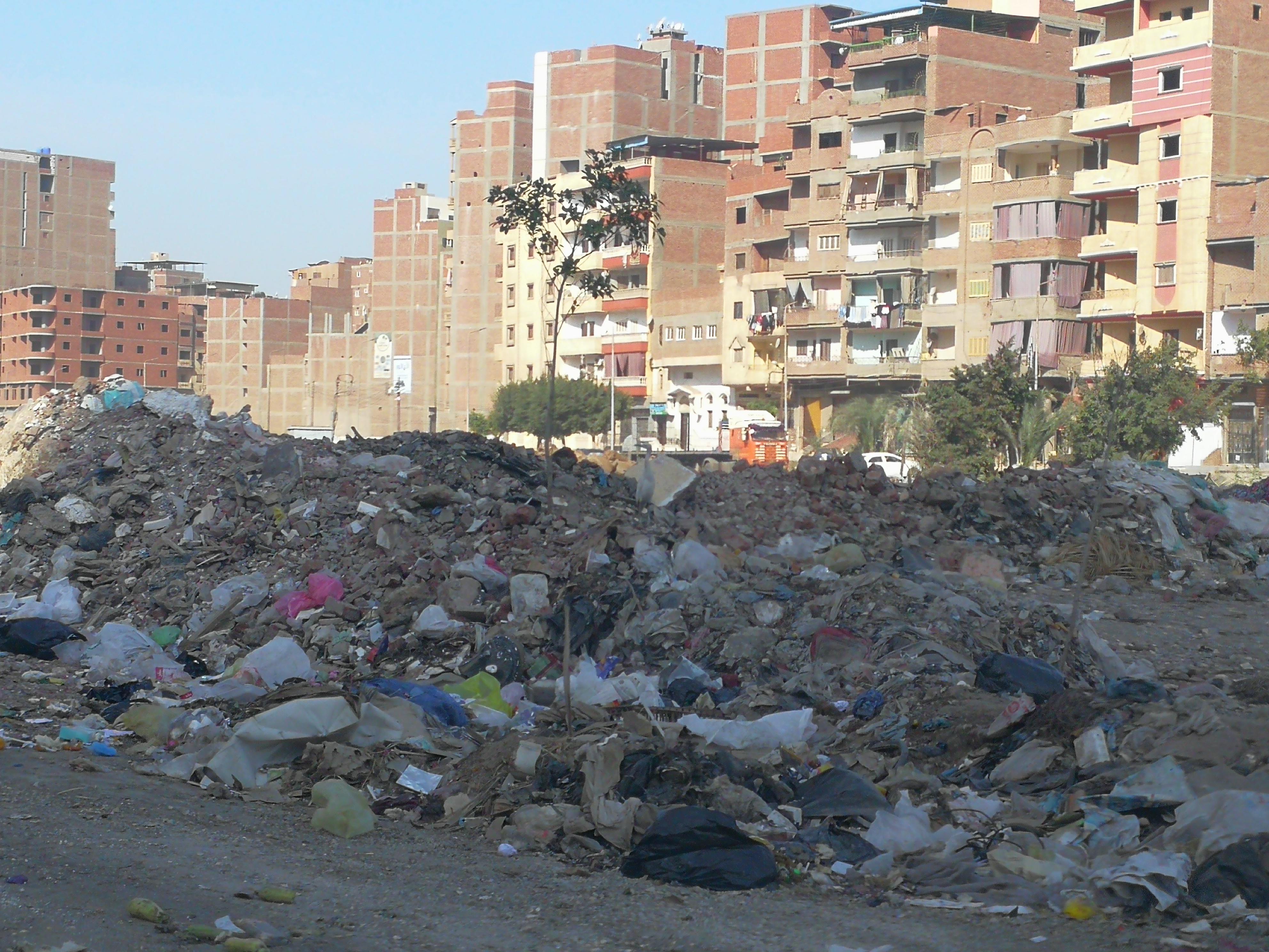 القمامة فى  شوارع طنطا (1)