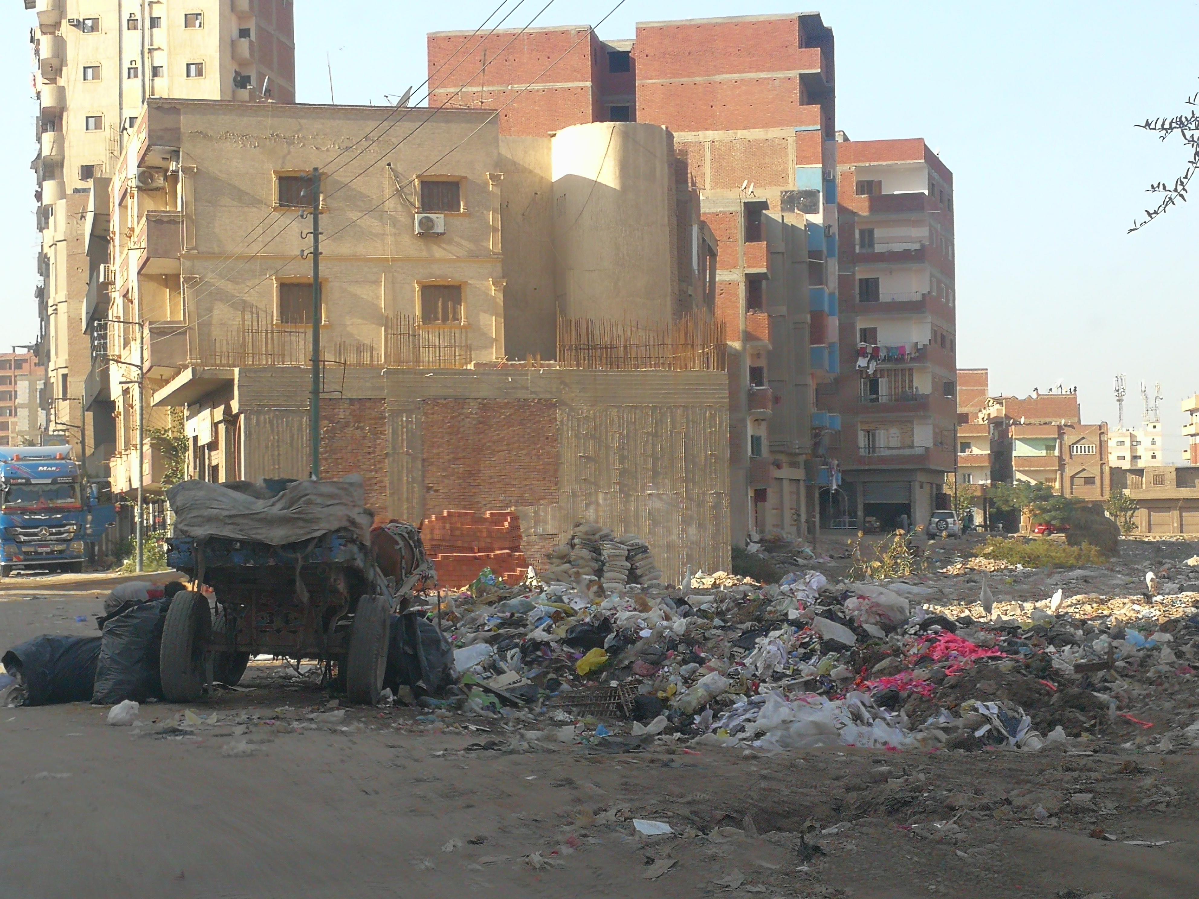 القمامة فى  شوارع طنطا (8)